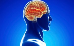 brain power from integrated medicine and hormone replacement therapy in Denver